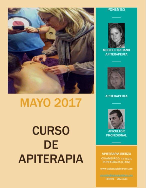 Curso Apiterapia Ponferrada 2017