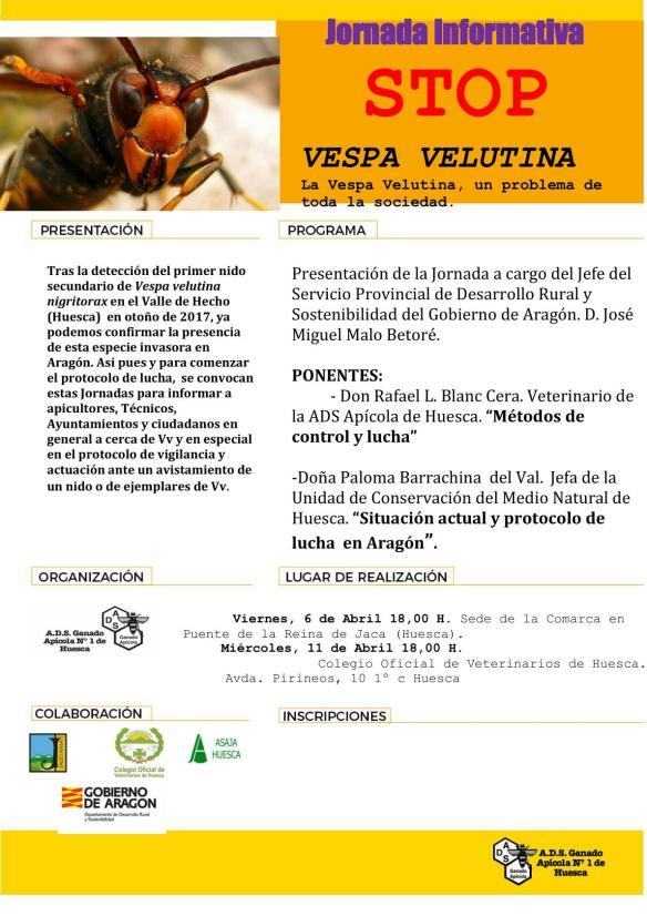 Jornadas Avispon Asiatico Huesca